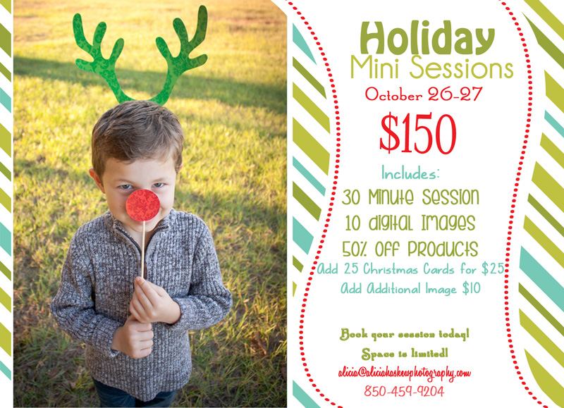 Holiday Mini Sessions 2013