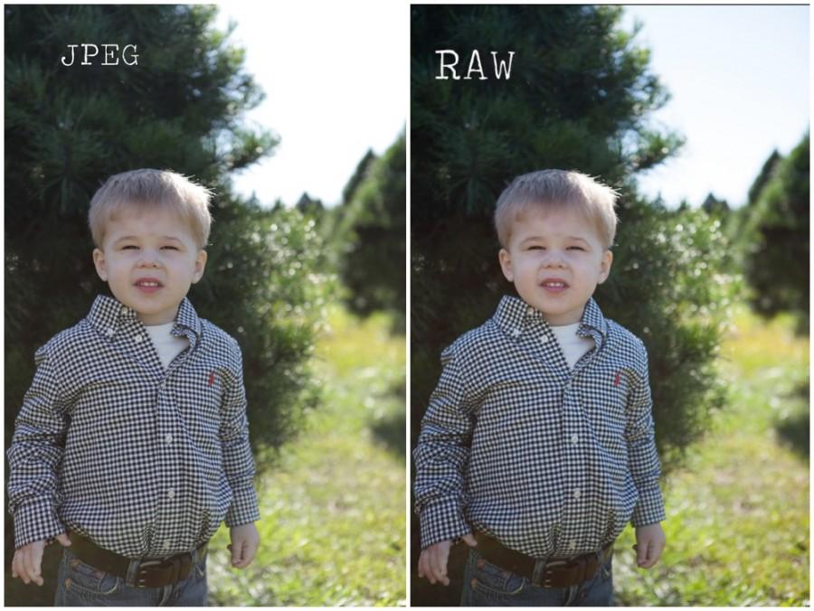 Resultado de imagen para JPEG versus Raw